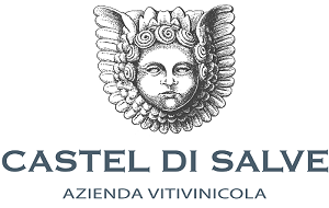 CastelDiSalve_Logo